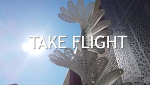 Take Flight Video Still Image