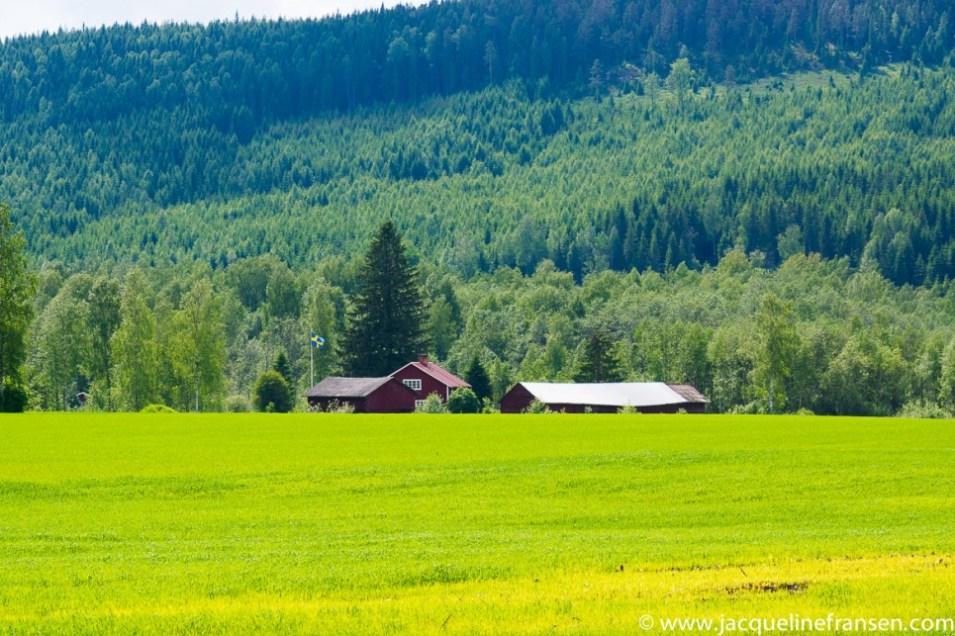 In beeld – Roadtrip Zweden