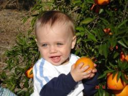 Une orange, juste pour moi.