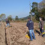 HORTA NA ESCOLA: Secretarias de Agricultura e da Educação iniciam projeto em Jacuizinho.