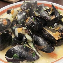 Seafood – Steamed Mussels With Fennel Tomatoes Ouzo And Cream