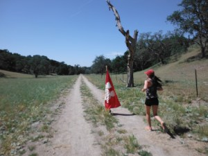 The out-and-back half-mile. I just had to run around the flag and return back to camp. Mile 30.5.