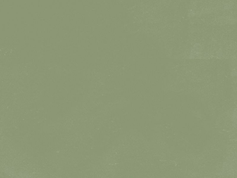 Couleur Coverit 87 Vert Olive