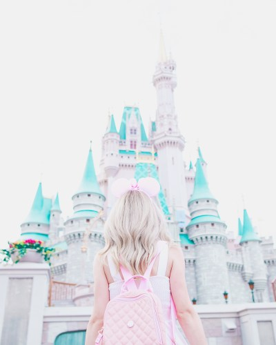 My Pretty & Pink Walt Disney World Adventures