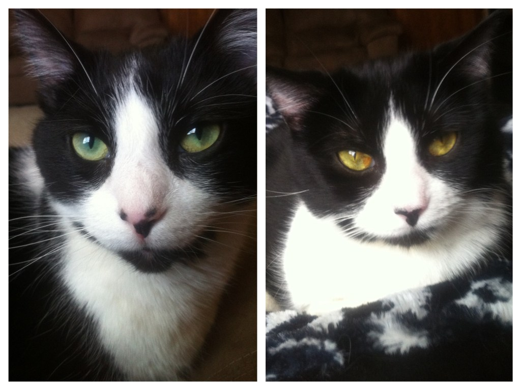 Jack & Nora