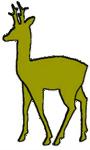 Jagdgenossenschaft Rabenau