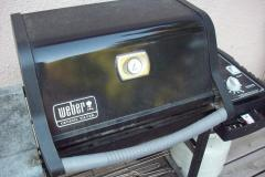 Weber Gas Grill Review