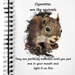 Fun journal for quitting smoking
