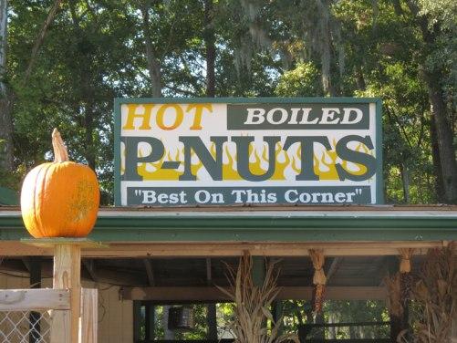 Hot Boiled Peanuts