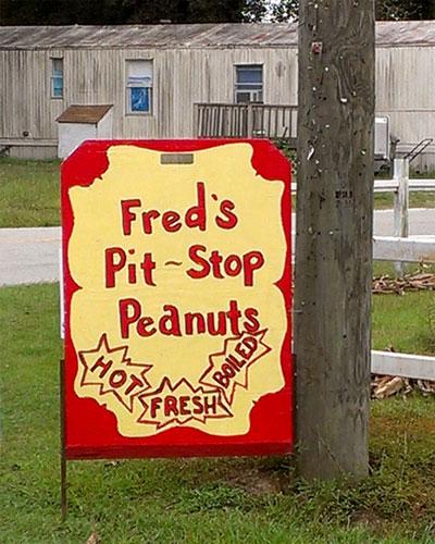 fresh boiled peanuts
