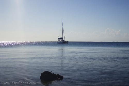 The MokaKat Catamaran