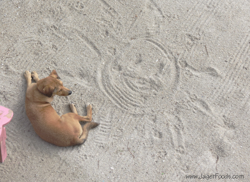 Woosters First Sand Art