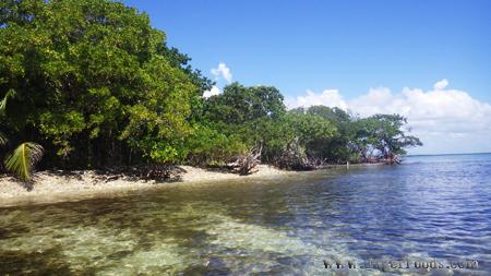 Little Monkey Caye Belize