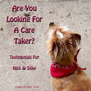 Are you looking for a care taker?