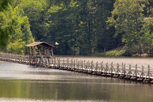 Bridge Over Lake Placid