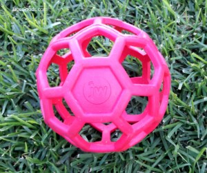 Training Dog Ball Review