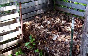 leave composting