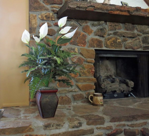 Silk Plant Decor