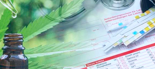CBD drug testing information