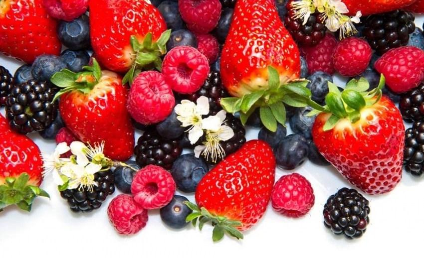 Как собрать самые лучшие ягоды, можно узнать во время садоводческой ярмарки Best berries – Польша