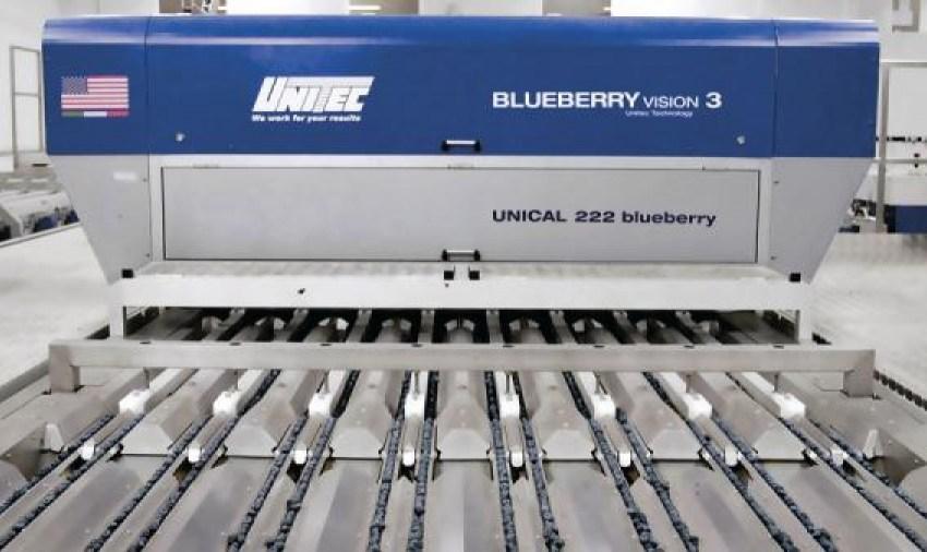 Унікальні технології класифікації якості лохини, здатні значно пролонгувати строк життя свіжої ягоди, представить компанія UNITEC
