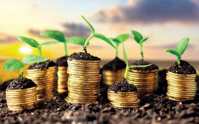 Держава здешевлюватиме кредити для агровиробників