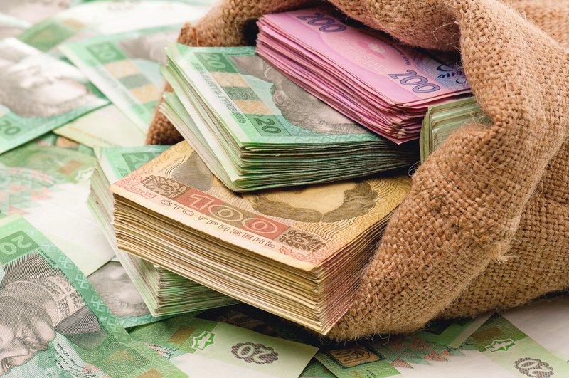 До уваги ягідників: оголошено конкурс з надання кредитів для фермерських господарств