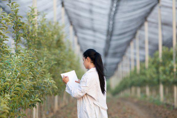Названо учасників конкурсу «Кращий агроном-садівник України», який пройде 22 жовтня у Львові в рамках конференції «Від землі – до готового продукту»