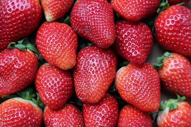 Ягоди преміумґатунку – висока ціна. Репортаж із ФГ Олега Пустовойта