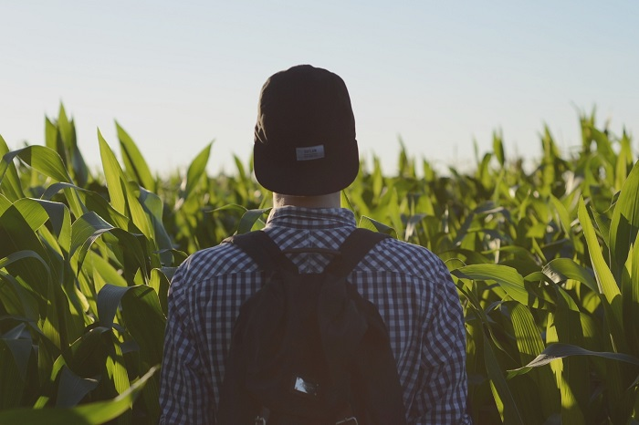 В Україні популяризуватимуть аграрну освіту серед молоді