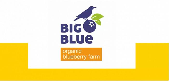 ТМ BigBlue увійшла до 15 найвідоміших органічних брендів