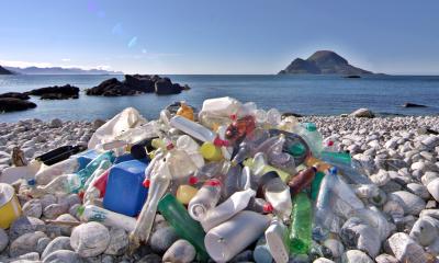 Peningkatan Jumlah Plastik Akan Berdampak Buruk Bagi Laut, Hewan dan Manusia Pada 2050
