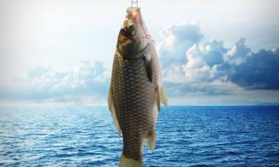 No Hurt Fishhook, Alat Memancing Pengganti Kait