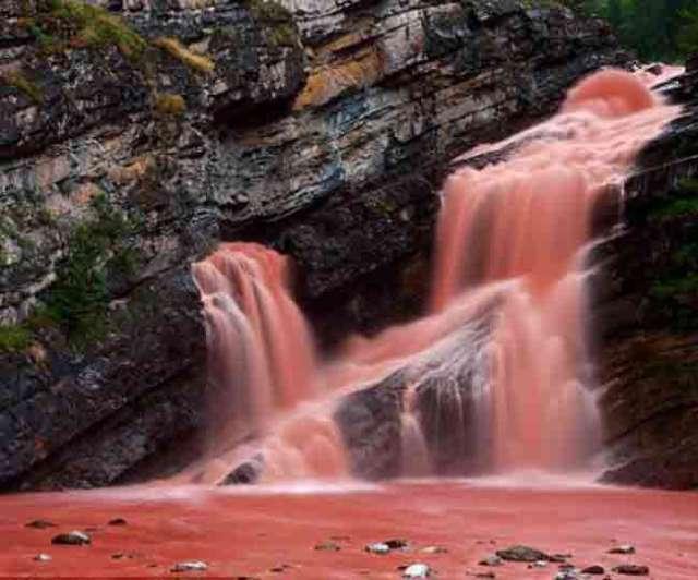 Image result for कैमरून फॉल्स , कनाडा