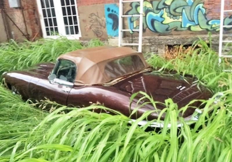 1969-jaguar-xke-series-ii