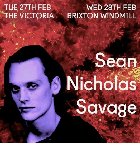 Bird On The Wire presents Sean Nicholas Savage