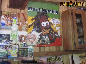 To smoke or not to smoke...