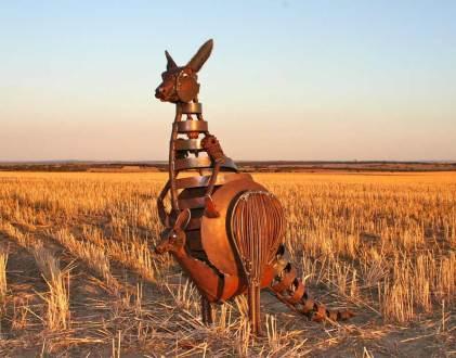 Kangaroo - SOLD