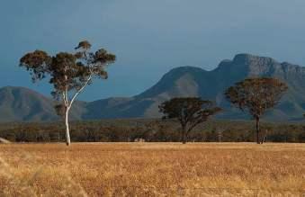 Stirling-Ranges-Landscape (1)