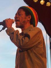 reggae sun ska 8