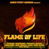 flame of life riddim