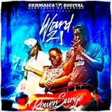 ward 21 power surge