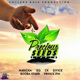 precious seeds riddim