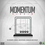 momentum riddim