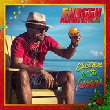 shaggy christmas in the islands