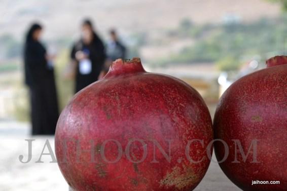 Pomegranates for sale in Jericho.