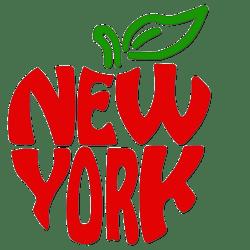 New York mayor