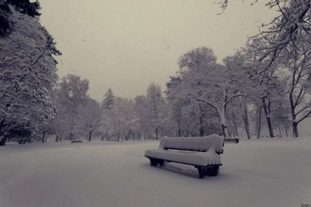 que de neige