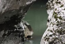 méandres au fond des gorges