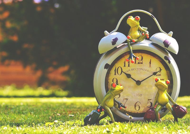 cuanto tiempo va a durar el concurso seo